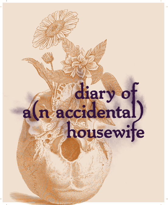 Mine Diary Of An Accidental Housewife